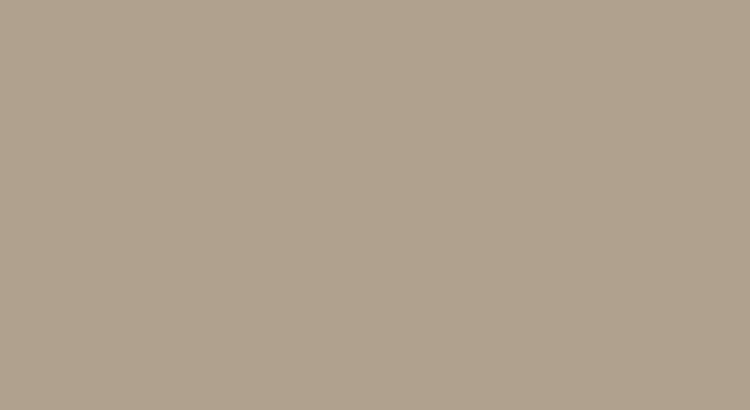GMN280-05 SUPERMAT CAPPUCINO (Çizilmez-Lake Yüzey)